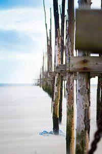 Palen op het strand met veel wind