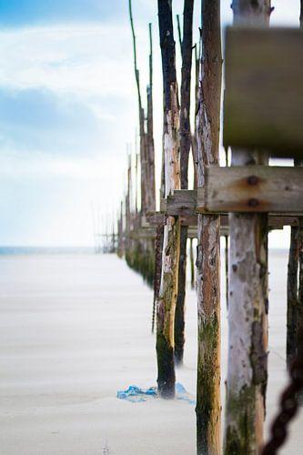 Palen op het strand met veel wind van