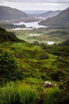 Irland von Eric van Nieuwland