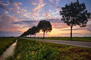 Landelijke Zonsondergang