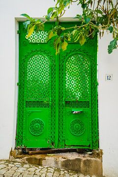 Groene Deur van Deborah Zannini