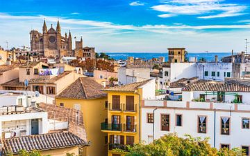 Spanje Mallorca, oude binnenstad Palma de Mallorca, Kathedraal La Seu van Alex Winter