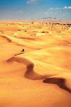 Dubai-woestijn met zandduinen van Jean Claude Castor