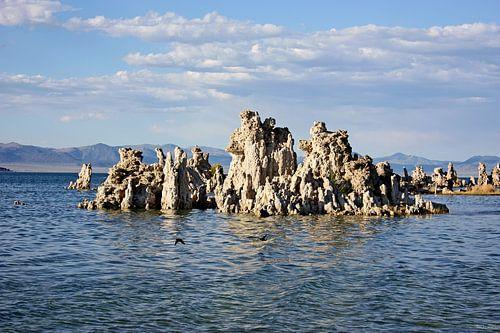 mono lake - III van Meleah Fotografie