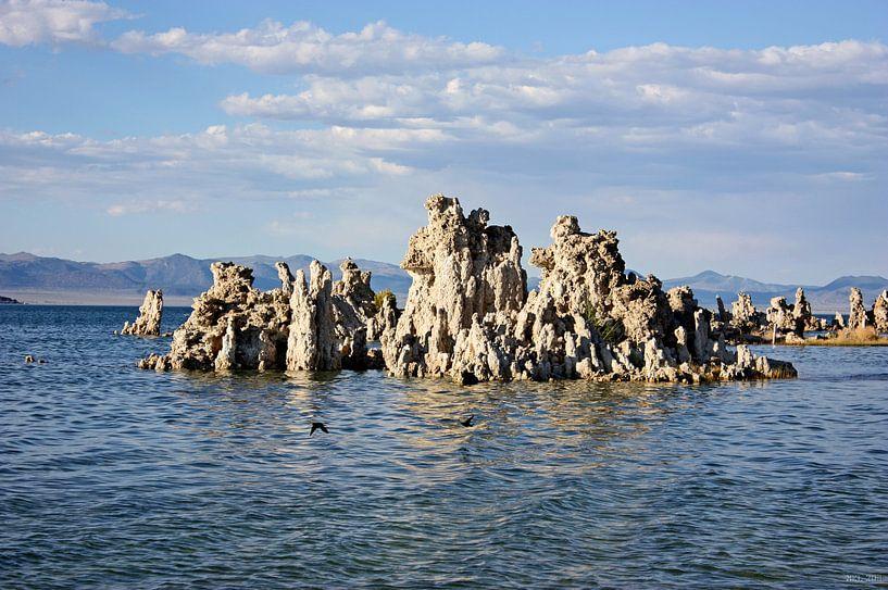 mono lake - III von Meleah Fotografie