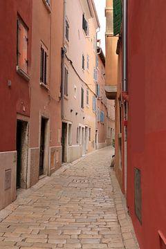 Kleurrijke stad van Nina Rotim
