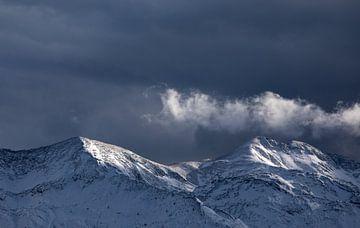 Schönes Licht nach Schneesturm in den Alpen, Slowenien von Olha Rohulya