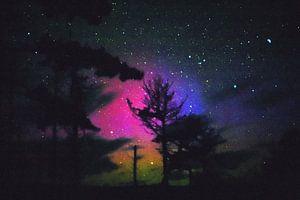 Tricolor noorderlicht. van Kaap Hoorn Gallery
