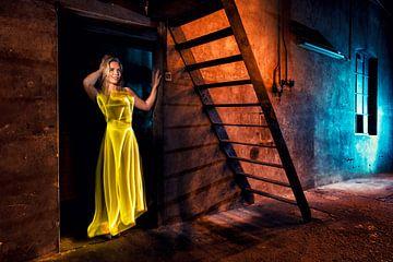 Mode der Lichtmalerei von Liesbeth van Asselt