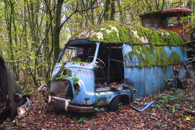 Verlassener Van in den Wäldern. von Roman Robroek