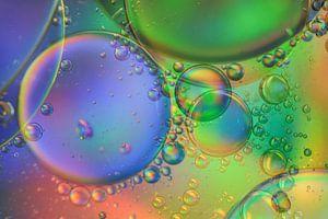 Kleurrijke fantasie van