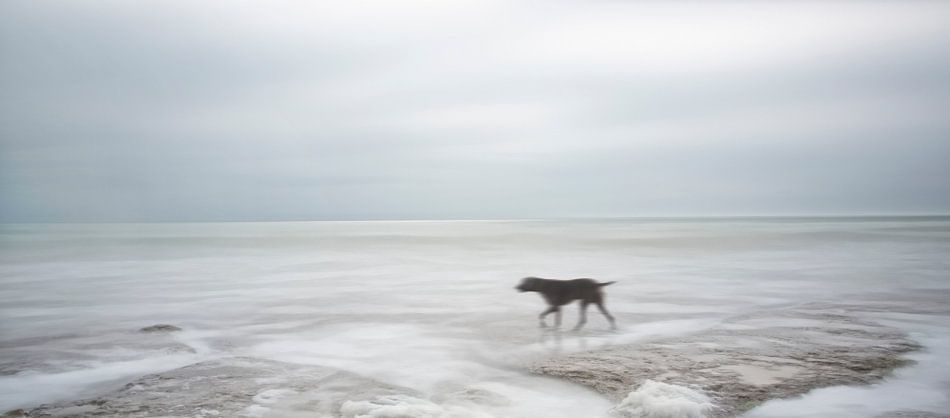 Verstilde zee van Marcel van Balken