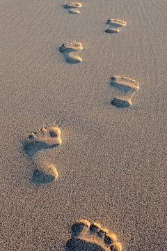 voetstappen in het zand von