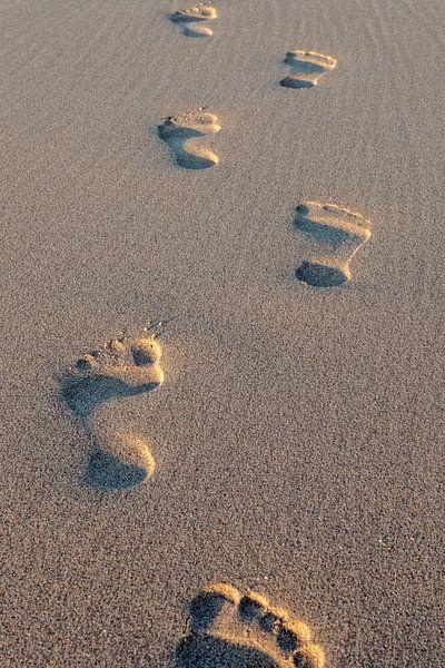 voetstappen in het zand van gaps photography