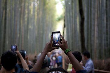 Kyoto Sagano bamboebos van Kees van Dun