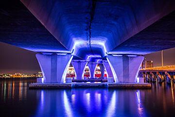 Onder de MacArthur Causeway Bridge  in Miami van Charles Poorter