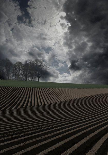 kunstmatig landschap van Henk Speksnijder