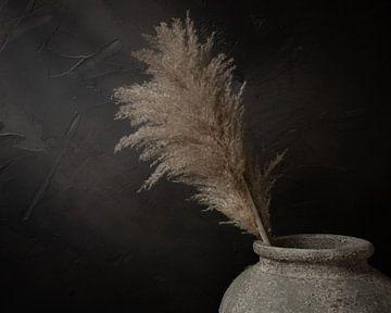Stilleven; pampas pluimen in grijze stenen kruik van Mayra Pama-Luiten