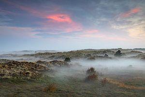 Zonsopgang op Terschelling met nevel in de duinen en rose wolken van Karin de Jonge