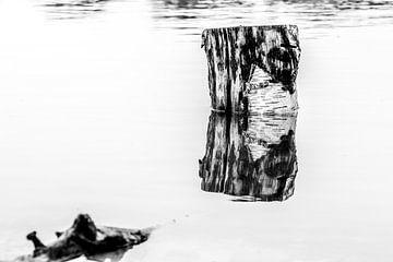 Reflexion von Dokra Fotografie