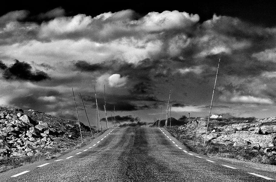 Weg in Jotunheimen, Noorwegen van Johan Zwarthoed