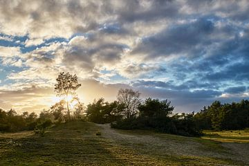Wolkenlucht boven de Veluwe