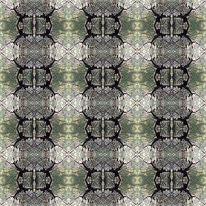 Muster mit einem Detail eines gefällten Baums