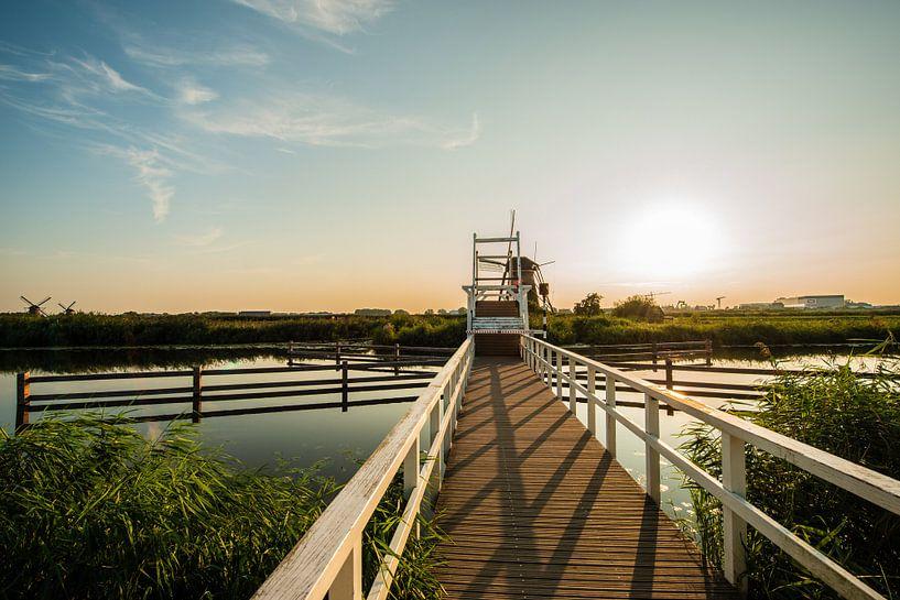 Kinderdijk Molens in Holland van Brian Morgan