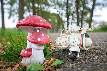 Bij paddenstoel geparkeerde scooter met zijspan van Jenco van Zalk
