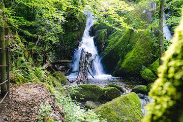 Wasserfall von Deborah Zannini
