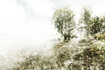 Nederlands landschap Bokhoven, Nederland van Peter Baak