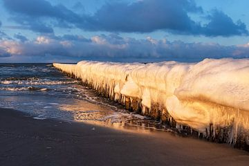 Buhne an der Ostseeküste in Zingst im Winter von Rico Ködder