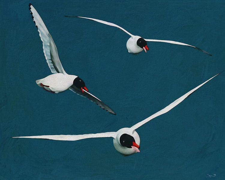 Goélands argentés volants aux ailes ouvertes sur Jan Keteleer