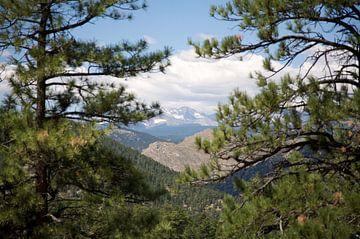 Rocky Mountains von Charlotte Meindersma