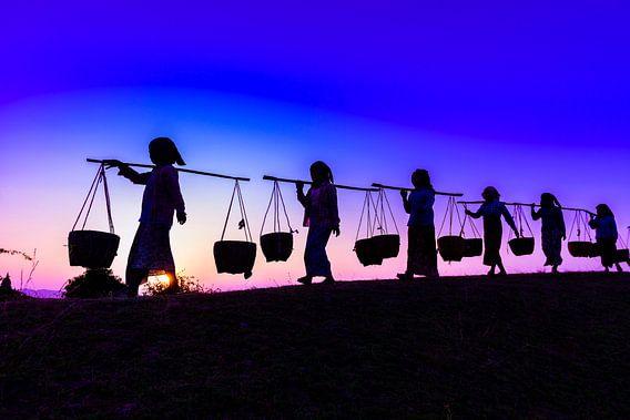 LPH 71311840 Silhouet van mensen die manden dragen bij zonsondergang, Myanmar, Burma