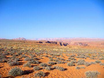 'Rood zand en struiken', Californië  van Martine Joanne