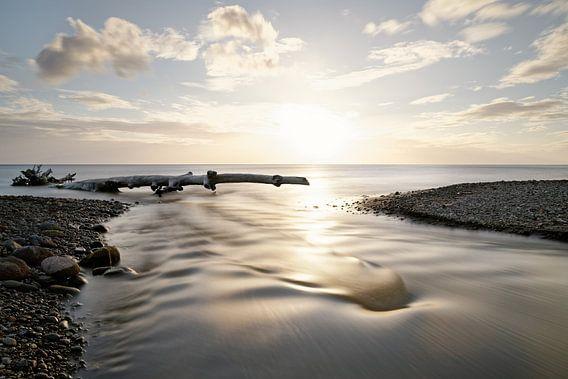 Sonnenuntergang am Meer mit Fluß und Treibholz