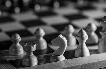 Schach in Schwarz und Weiß von Paul Veen