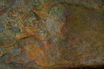 De waarheid staat geschreven in steen van Cilia Brandts