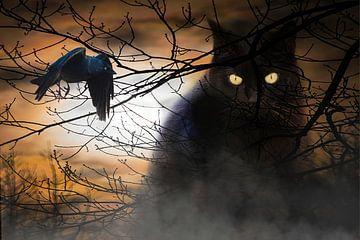 Halloween van Klaartje Majoor