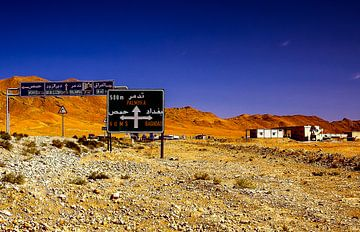 Op weg naar Palmyra van René Holtslag