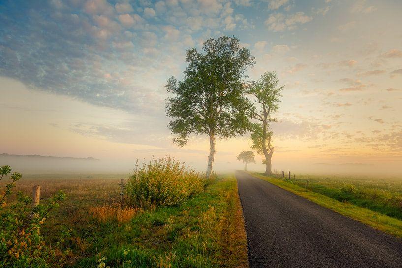 Zomaar een weg van Anneke Hooijer