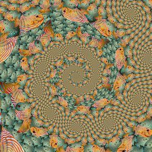 Spiraal van Spiralen van Tropische Vissen