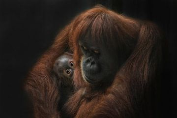 loving her Baby van Joachim G. Pinkawa
