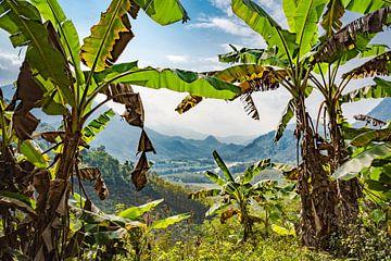 Schauen Sie durch die Landschaft von Laos von Rietje Bulthuis