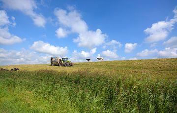 Hollandse polder  von Remco Van Daalen