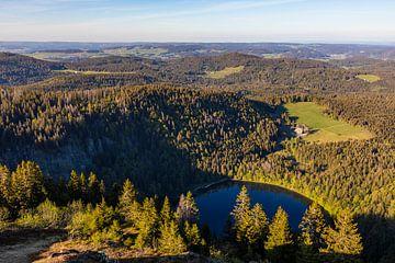 Blick vom Feldberg über den Feldsee im Schwarzwald von Werner Dieterich