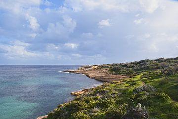 Die Küste von Gozo von Sander Hekkema