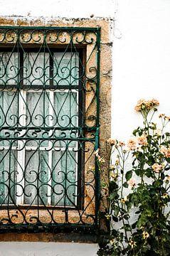 romantische raam met bloemen von Sabrina Varao Carreiro