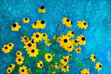 Rudbeckia met blauwe achtergrond van Corinne Welp